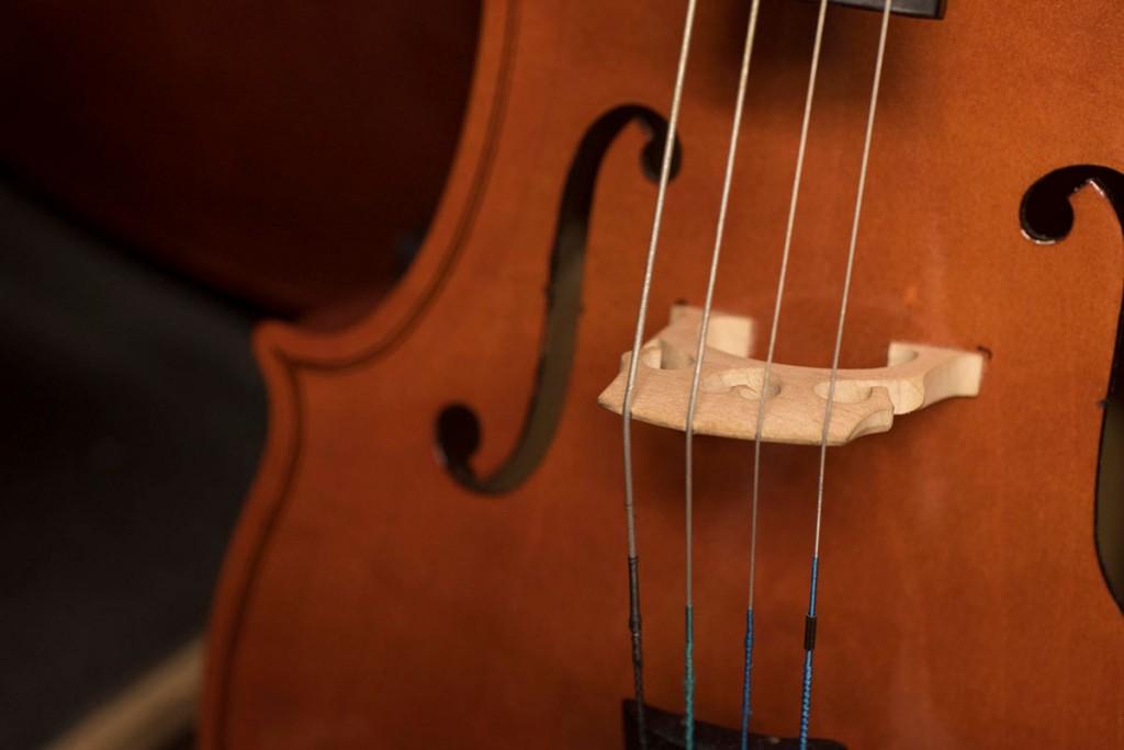 Scaramuzza Strumenti Musicali Cremona - 11