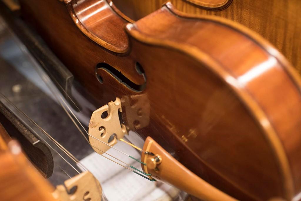 Scaramuzza Strumenti Musicali Cremona - 14
