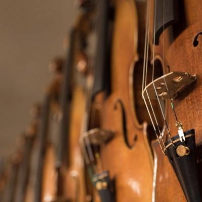 Scaramuzza Strumenti Musicali Cremona - 10
