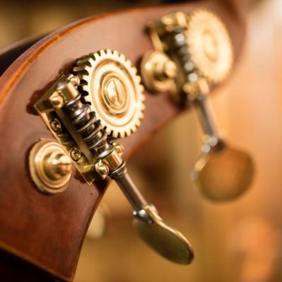 Scaramuzza Strumenti Musicali Cremona - 13