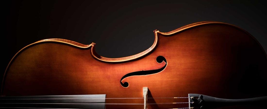 Il bonus Stradivari (approfondimenti)