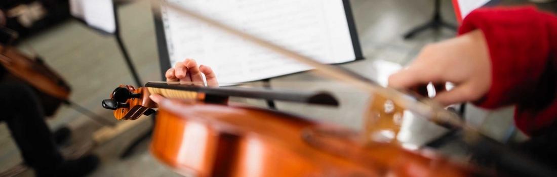Scaramuzza Strumenti Musicali presenta: New Larsen Virtuoso® for Viola.