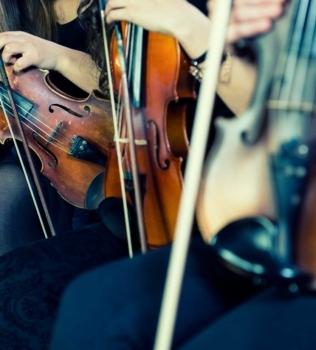 """Le nuove corde per Violino """"CANNONE"""" della ditta Larsen"""