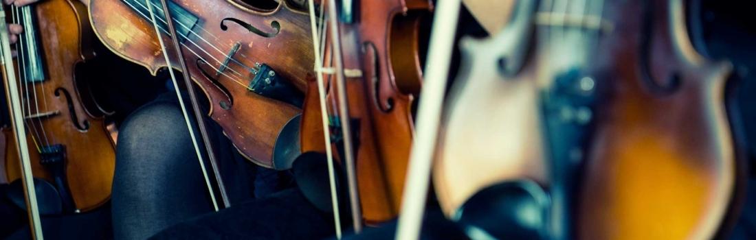 """Le nuove corde per Violino """"IL CANNONE"""" della ditta Larsen"""
