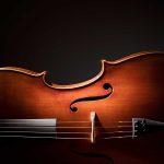 bonus Stradivari, dettagli