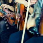 corde violino Larsen